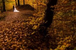 Fotograf nunta trash the dress Valea Doftanei