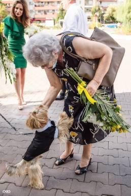 cununie ciivila bunica si catel